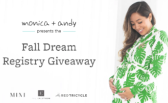 Monica + Any Fall Registry Giveaway